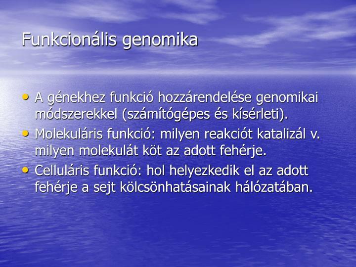 Funkcionális genomika