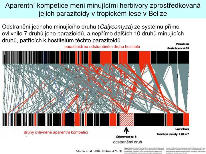 Aparentní kompetice meni minujícími herbivory zprostředkovaná jejich parazitoidy v tropickém lese v Belize