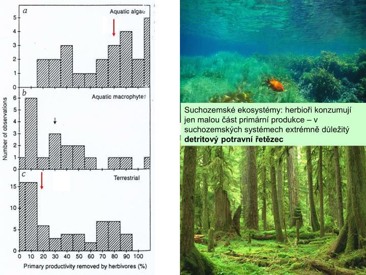 Suchozemské ekosystémy: herbioři konzumují jen malou část primární produkce – v suchozemských systémech extrémně důležitý