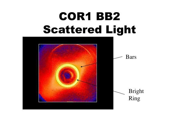COR1 BB2