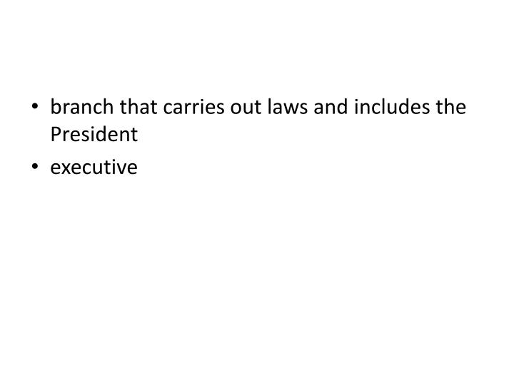 branch that carries out laws and includes the