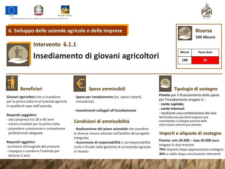 6. Sviluppo delle aziende agricole e delle imprese