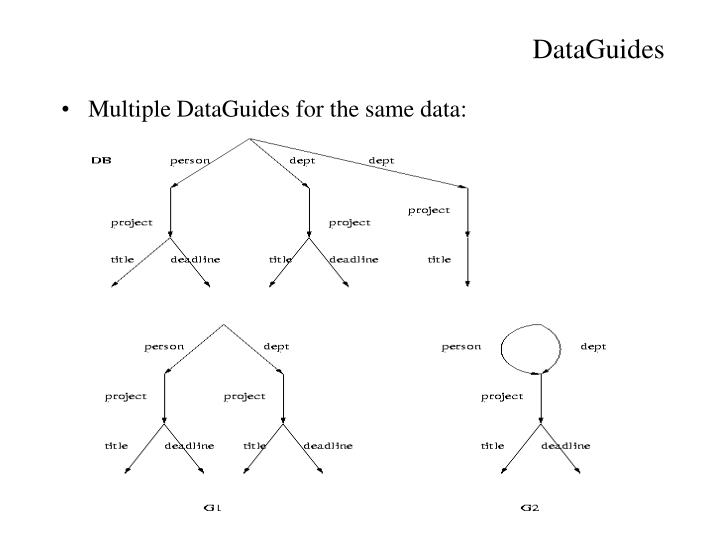 DataGuides