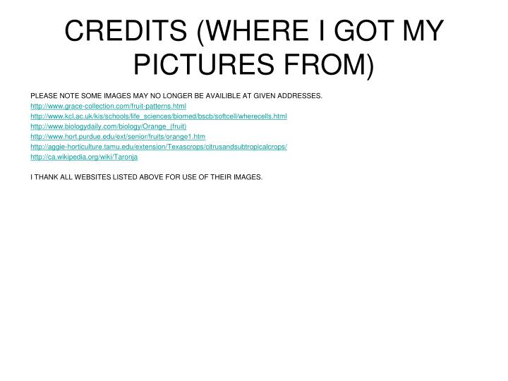 CREDITS (WHERE I GOT MY PICTURES FROM)