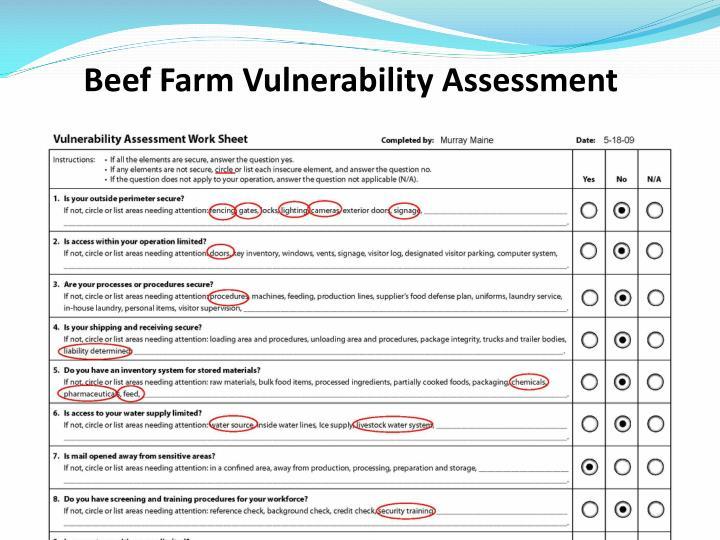 Beef Farm Vulnerability Assessment