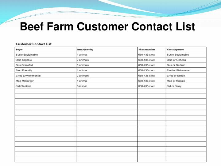 Beef Farm Customer Contact List