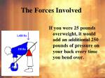 the forces involved3