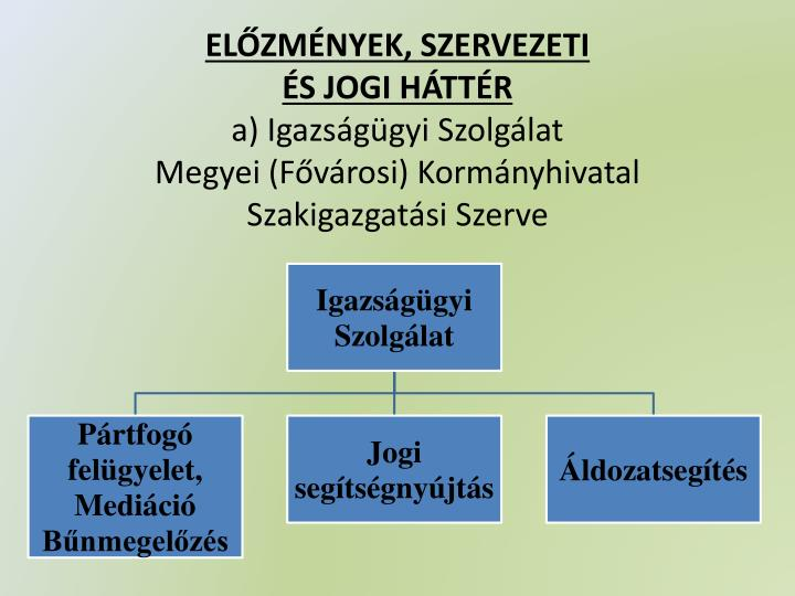 ELŐZMÉNYEK, SZERVEZETI