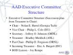 aad executive committee structure