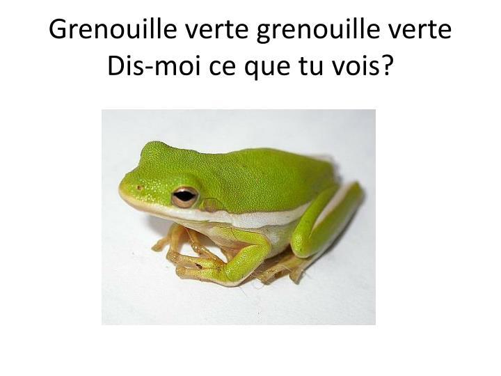 Grenouille verte grenouille verte