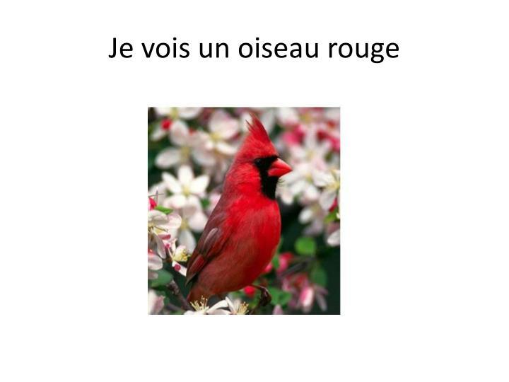 Je vois un oiseau rouge