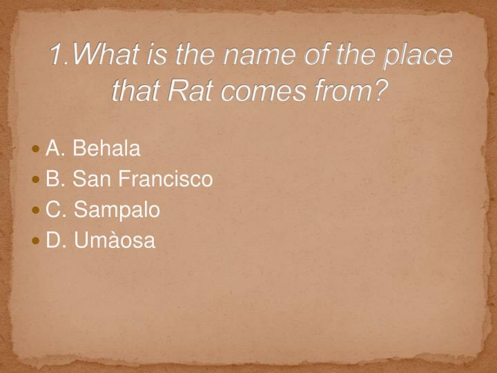 1.What is the name of the place that Rat comes from?