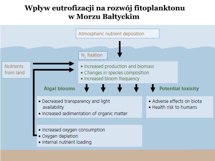 Wpływ eutrofizacji na rozwój fitoplanktonu