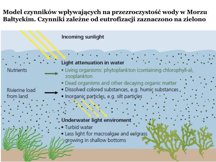 Model czynników wpływających na przezroczystość wody w Morzu Bałtyckim. Czynniki zależne od eutrofizacji zaznaczono na zielono