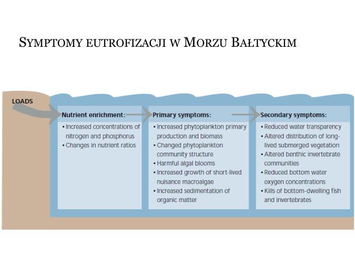 Symptomy eutrofizacji w Morzu Bałtyckim