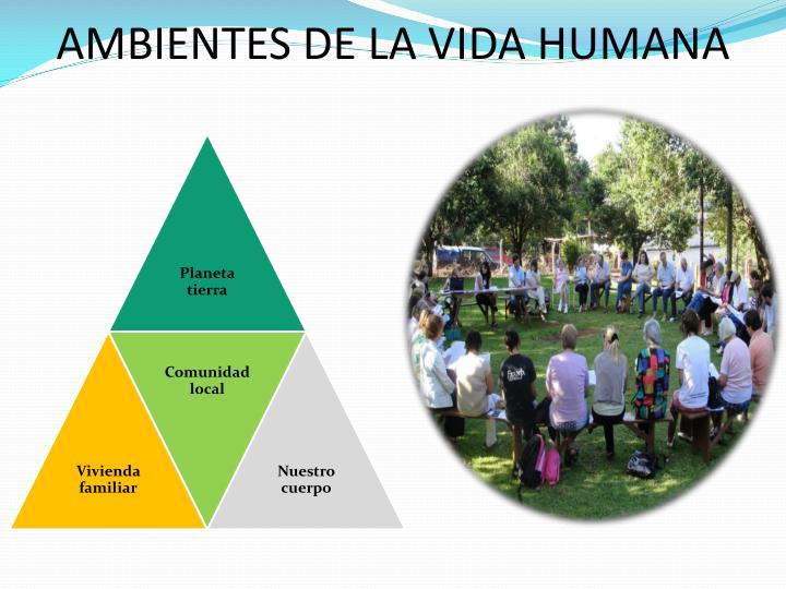 AMBIENTES DE LA VIDA HUMANA