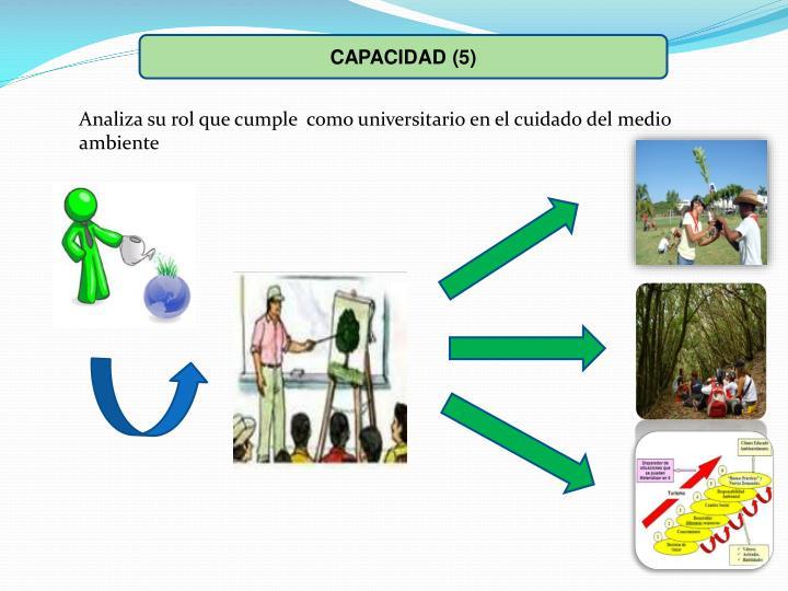 CAPACIDAD (5)