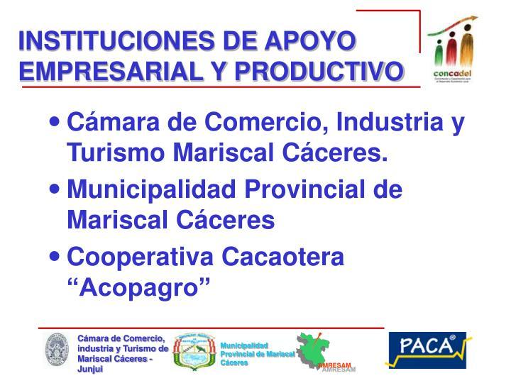 INSTITUCIONES DE APOYO EMPRESARIAL Y PRODUCTIVO