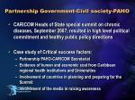 partnership government civil society paho