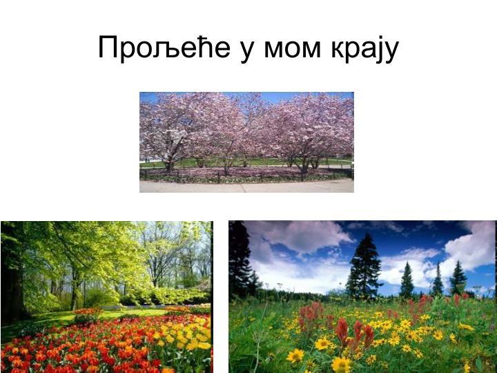 Прољеће у мом крају