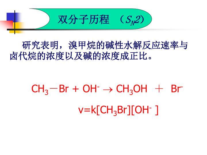 双分子历程 (