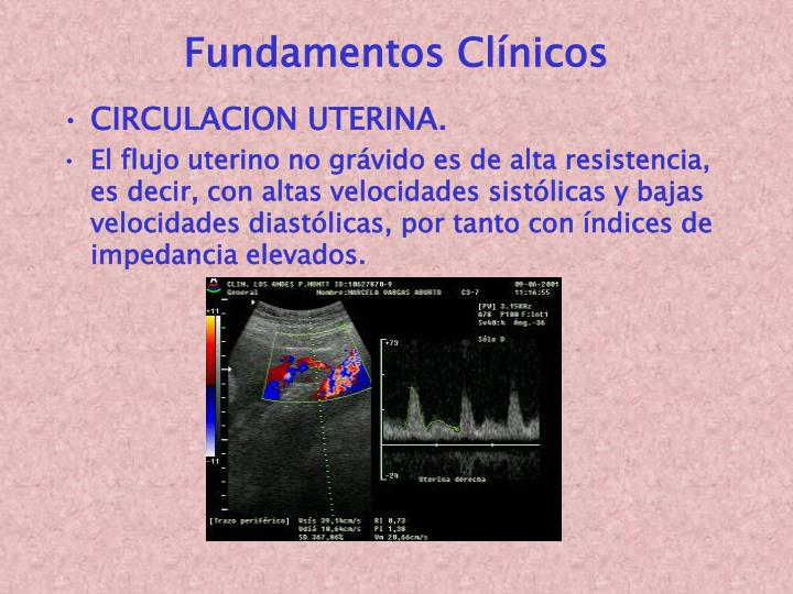 Fundamentos Clínicos