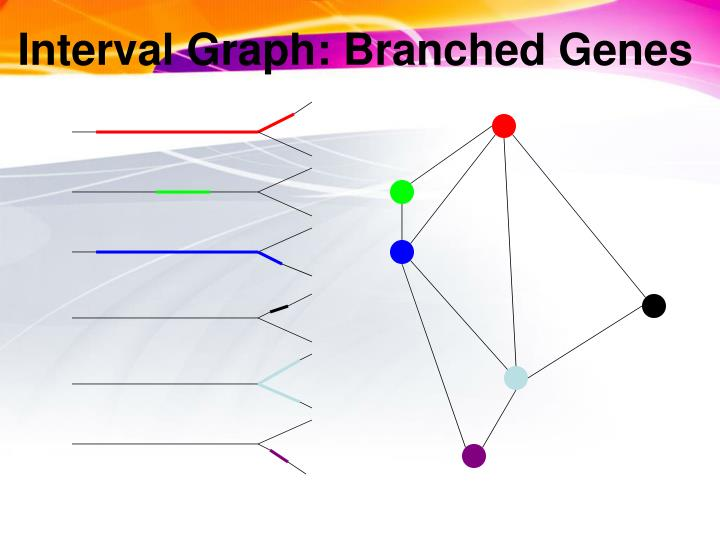 Interval Graph: Branched Genes