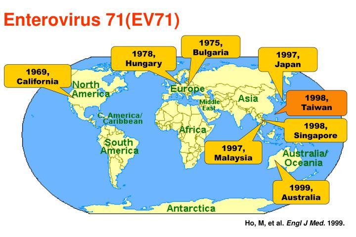 Enterovirus 71(EV71)