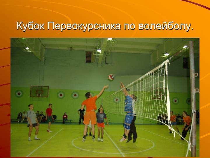 Кубок Первокурсника по волейболу