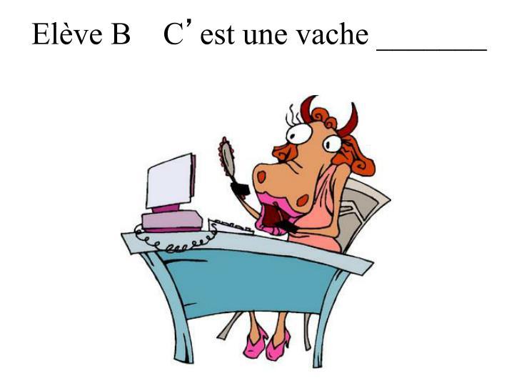 Elève B    C
