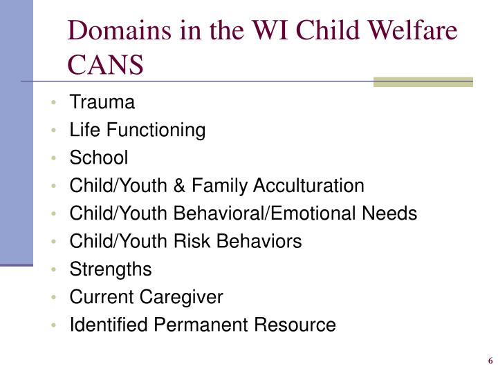 Domains in the WI Child Welfare CANS
