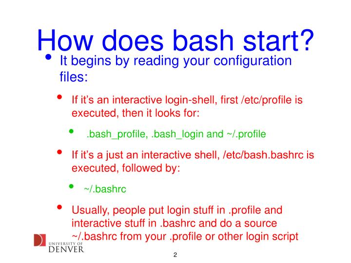 How does bash start?