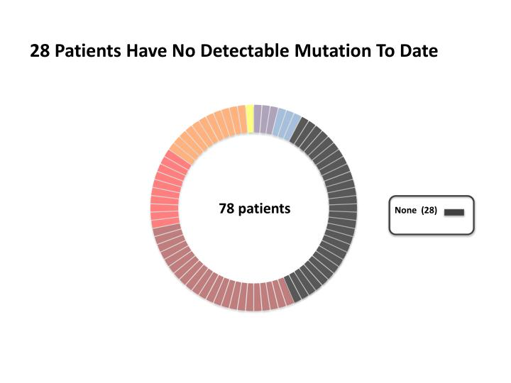 28 Patients Have No Detectable Mutation To Date