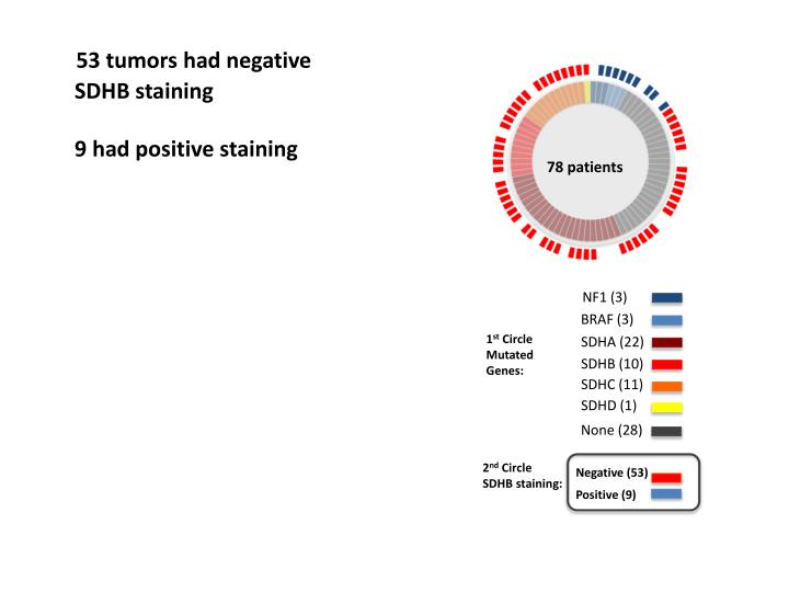53 tumors had negative