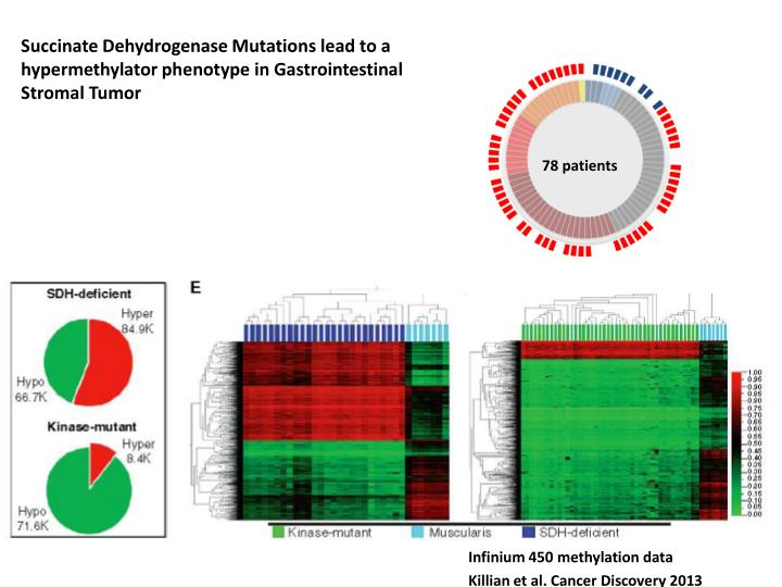 Succinate Dehydrogenase Mutations lead to a hypermethylator phenotype in Gastrointestinal Stromal Tumor