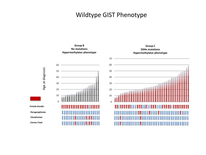 Wildtype GIST Phenotype