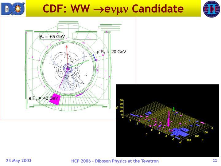 CDF: WW