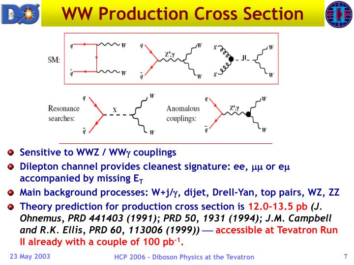 WW Production Cross Section