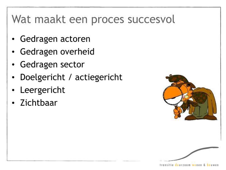 Wat maakt een proces succesvol