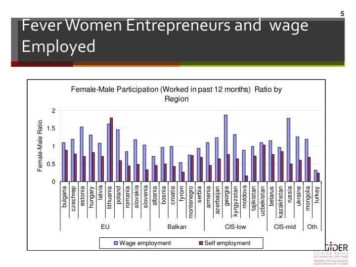 Fever Women Entrepreneurs and  wage Employed