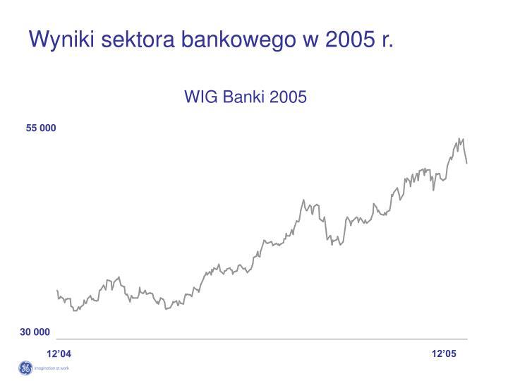 Wyniki sektora bankowego w 2005 r.