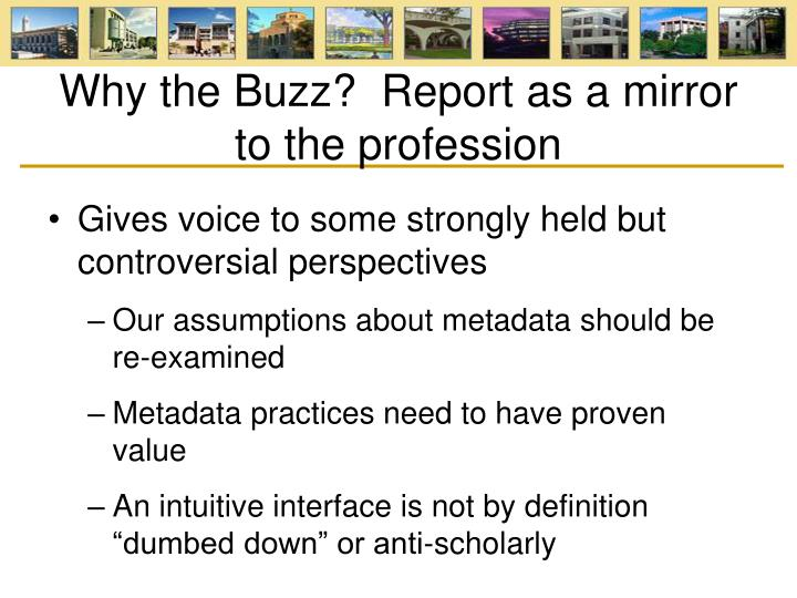 Why the Buzz?  Report as a mirror to the profession