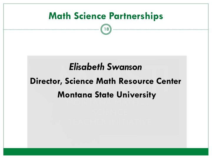 Math Science Partnerships