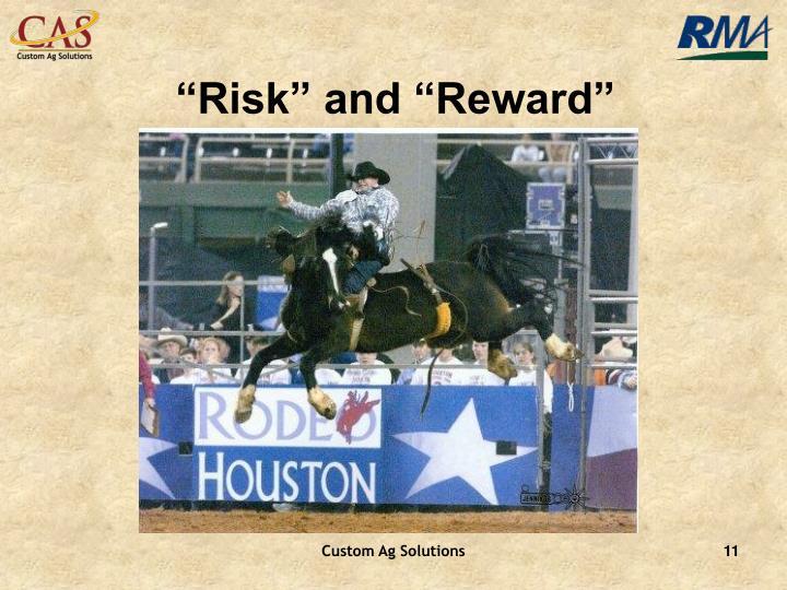 """Risk"" and ""Reward"""