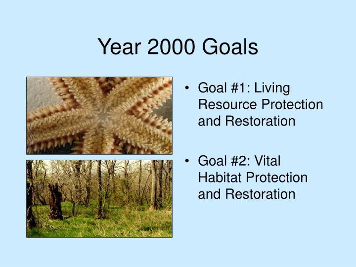 Year 2000 Goals