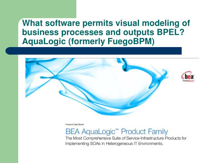 What software permits visual modeling of business processes and outputs BPEL? AquaLogic (formerly FuegoBPM)