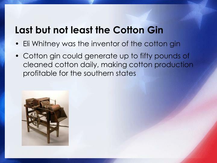 cotton essay