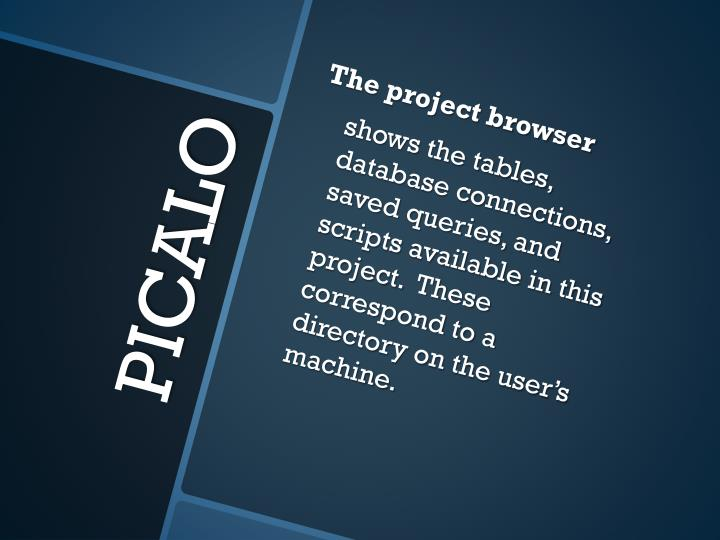 The project browser