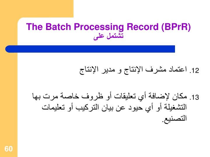 The Batch Processing Record (BPrR)
