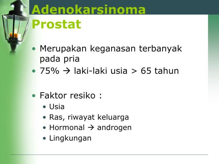 Adenokarsinoma Prostat